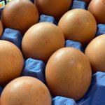 1/2 Doz Eggs - £2